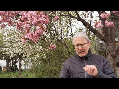 """Ostergedanken zum Mitnehmen: """"Das Leben ist stärker!"""""""